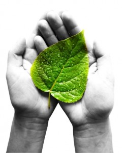 Cuales son las perspectivas sobre la sostenibilidad planetaria y medio ambiente