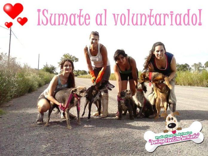 Protectora Sarmiento y refugio de animales