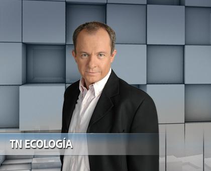 El papel de los medios en la nueva economía SERGIO ELGUEZABAL