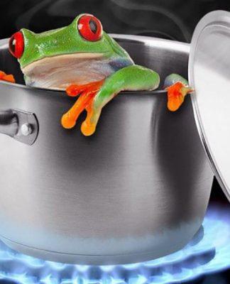 fabula rana hirviendo