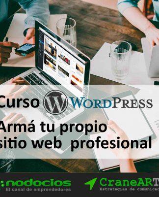 armar pagina web profesional